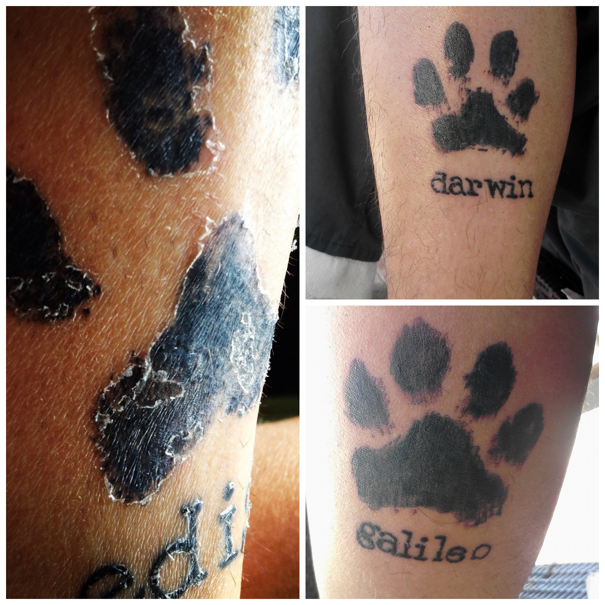 Realistic cat paw print tattoo / Game coc for laptop