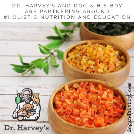 #Holistic nutrition for deaf dogs from Dr. Harvey's