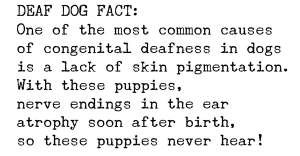 Causes of Congenital Deafness in Dogs