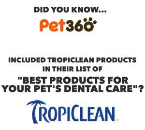Top Dental Products for Pets from Pet360.com
