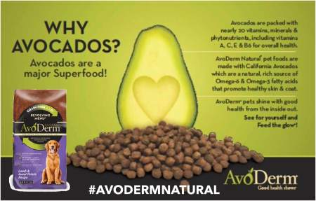 This post is sponsored by Avoderm and the BlogPaws Professional Pet Blogger Network. I am being compensated for helping spread the word about Avoderm Rotational Menu but Dog & His Boy only shares information we feel is relevant to our readers. Avoderm is not responsible for the content of this article.
