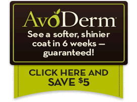 Click here to grab $5.00 off the AvoDerm Revolving Menu for your deaf dog!