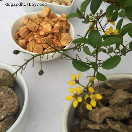 Holistic dog training treats for deaf dogs from Dr. Harvey's, deaf dog training tips advice, Dog & His Boy deaf dog blog