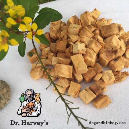 Holistic training treats for deaf dogs by Dr. Harvey's, Dog & His Boy deaf dog blog, deaf dog training tips and advice
