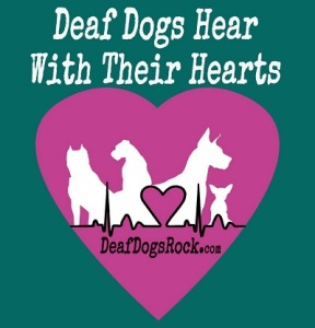 deaf-dogs-hear-with-their-hearts